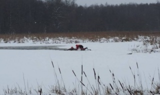 Jeleń wpadł do zbiornika wodnego. Z pomocą ruszyli strażacy